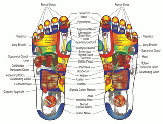 foot_reflexology_map